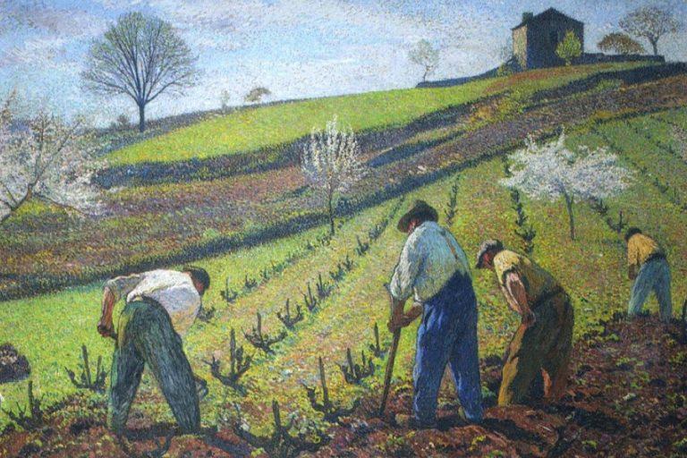 """La viticoltura europea rischia la scomparsa dei """"contadini"""""""