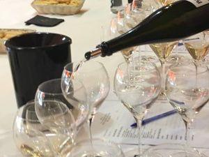 Nutrizione e qualità dei vini