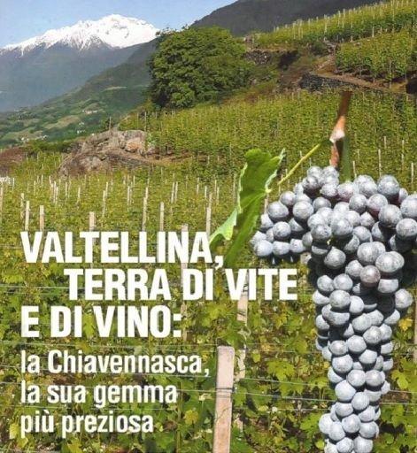 Valtellina, terra di vite e di vino