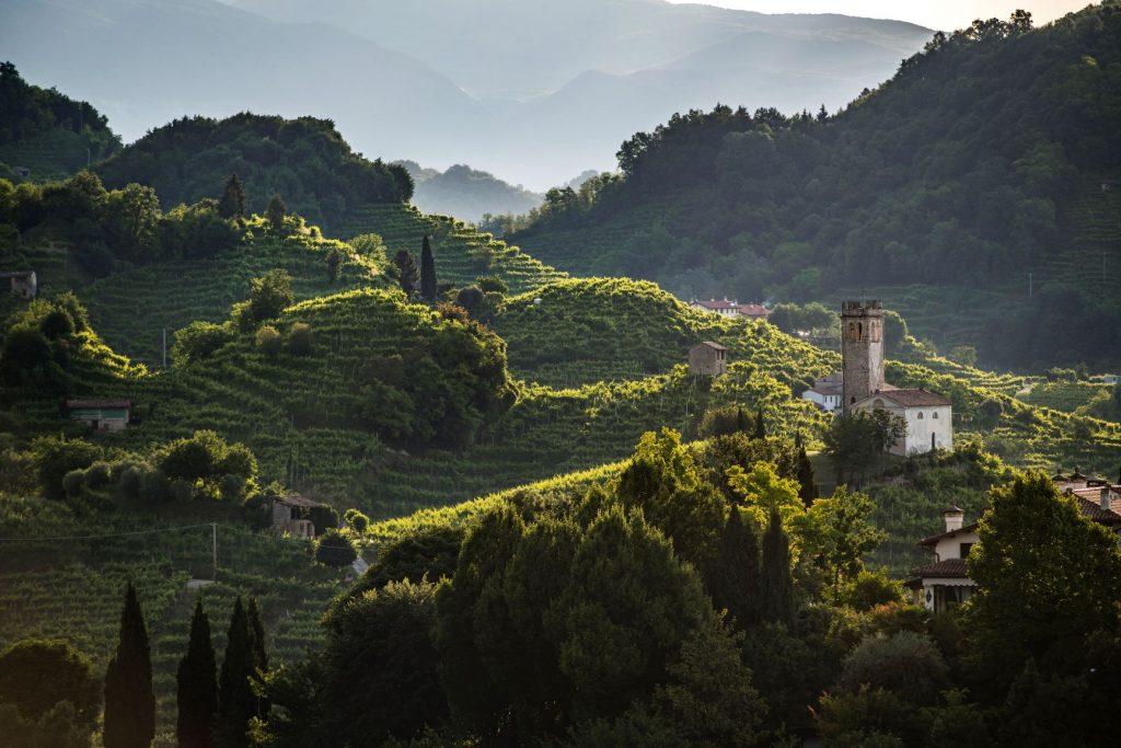 Conegliano-Valdobbiadene DOCG, si aggiorna il protocollo viticolo