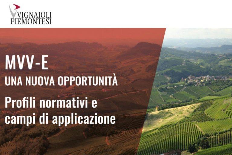 MVV-E Una nuova opportunità, profili normativi e campi d'applicazione
