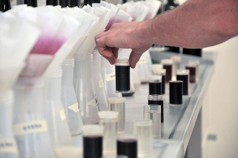 A Macrowine 400 esperti sulla ricerca vitivinicola mondiale