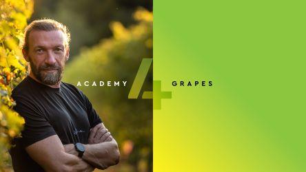 Academy 4Grapes, nuova edizione